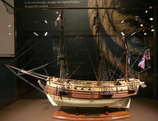 Beagle ship model